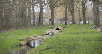 Le Versailles de Sylvain Parrot